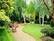 organic landscape care  League City TX